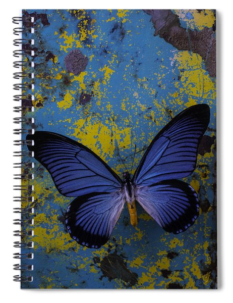 Blue Butterfly On Rusty Wall Spiral Notebook