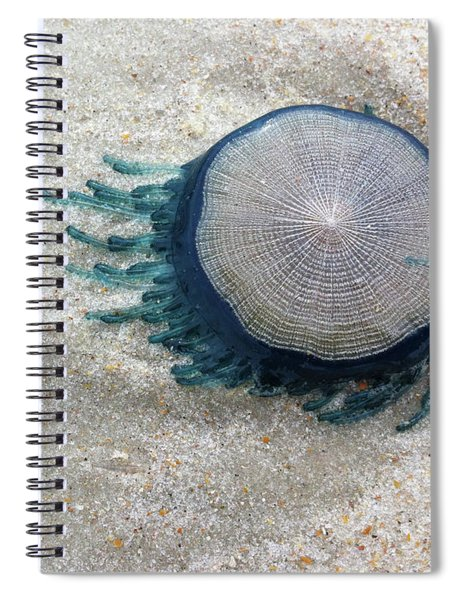 Blue Button #2 Spiral Notebook
