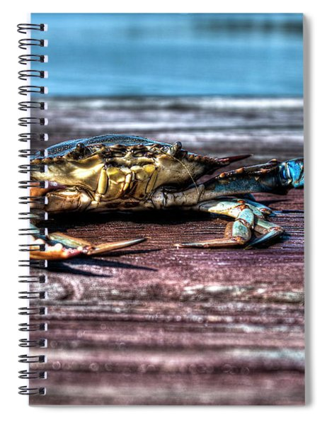 Blue Crab - Big Claws Spiral Notebook