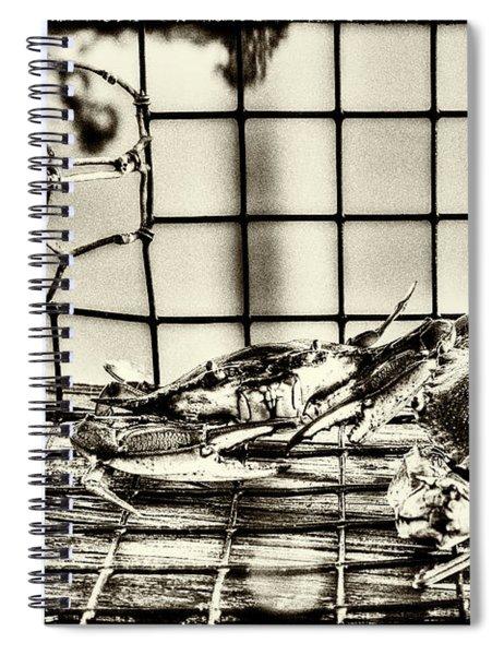 Blue Crabs - Vintage Spiral Notebook