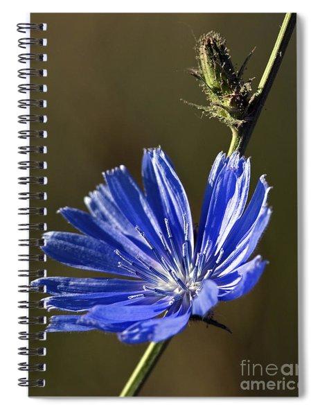 Blue Dream.. Spiral Notebook