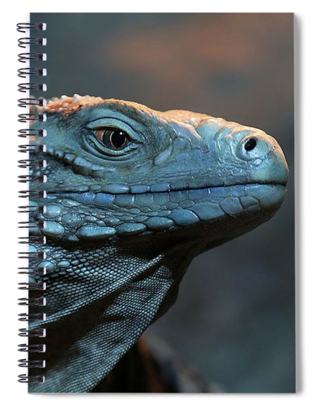 Blue Iguana Spiral Notebook