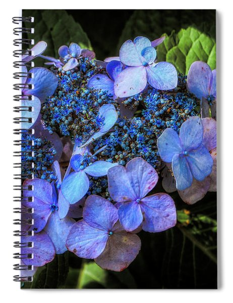 Blue In Nature Spiral Notebook
