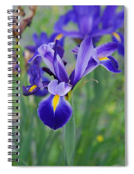 Blue Iris Flower Spiral Notebook
