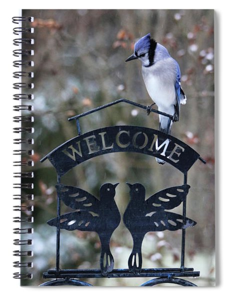 Blue Jay Is Welcome Here Spiral Notebook