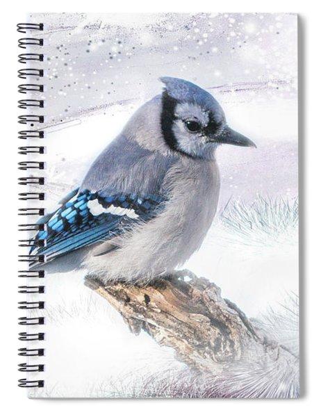 Blue Jay Snow Spiral Notebook