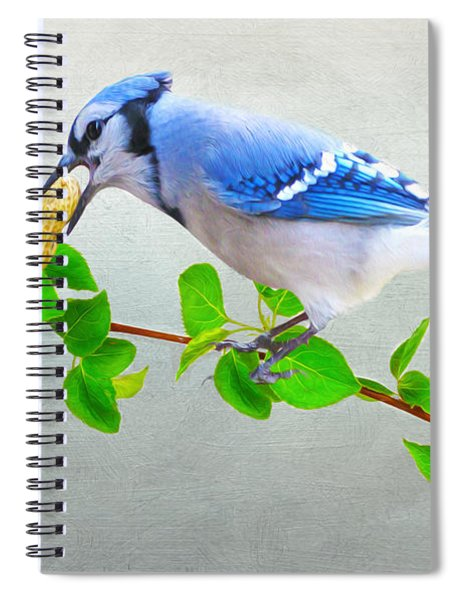Blue Jay With Peanut Spiral Notebook