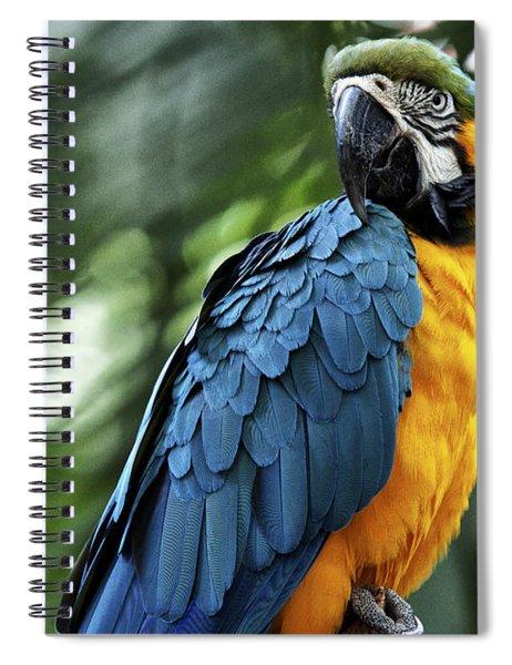Blue Mack Spiral Notebook