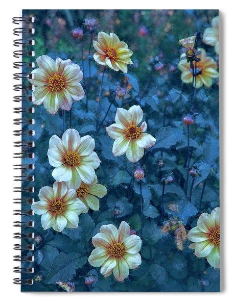 Blue Mood Spiral Notebook