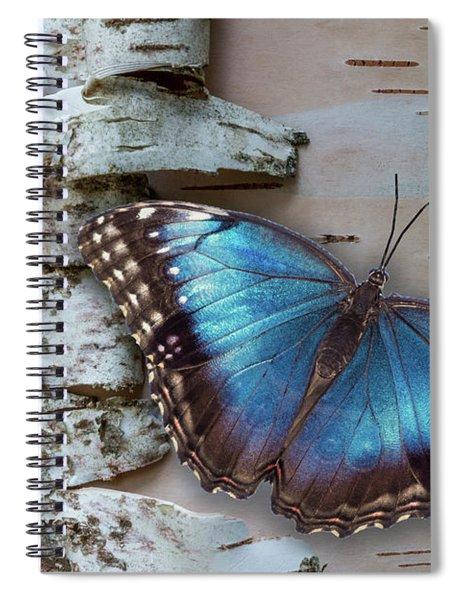 Blue Morpho Butterfly On White Birch Bark Spiral Notebook