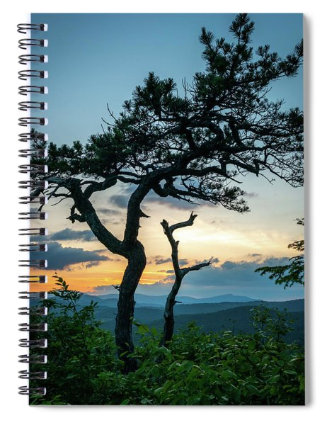 Blue Ridge Mountains Dr. Tree Spiral Notebook