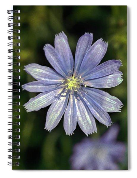 Blue Sailors Spiral Notebook