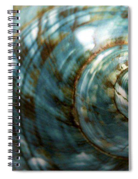 Blue Seashell Spiral Notebook