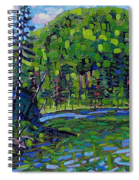 Blue Sky Greens Spiral Notebook