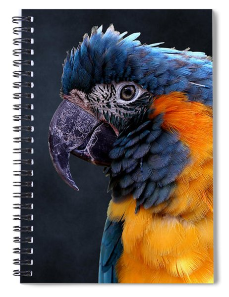 Blue-throated Macaw Profile Spiral Notebook