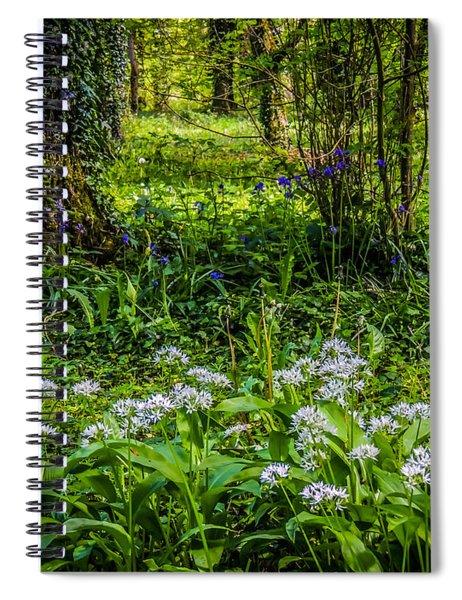 Bluebells And Wild Garlic At Coole Park Spiral Notebook