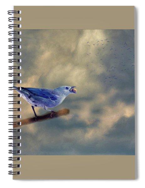 Bluebird With Berry Spiral Notebook