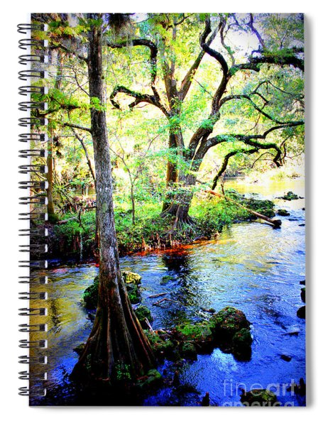Blues In Florida Swamp Spiral Notebook