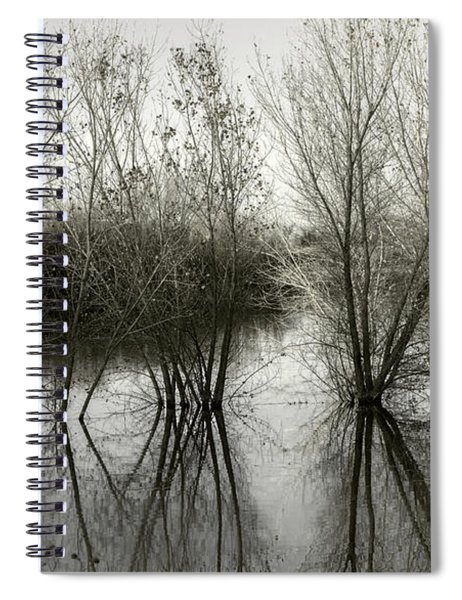 Bosque Reflection Spiral Notebook