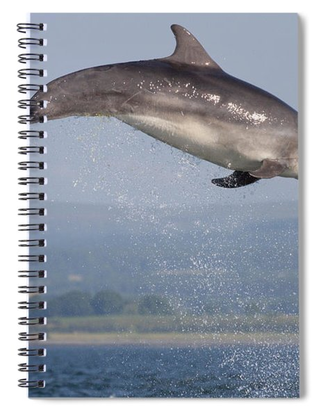 Bottlenose Dolphin - Scotland #3 Spiral Notebook