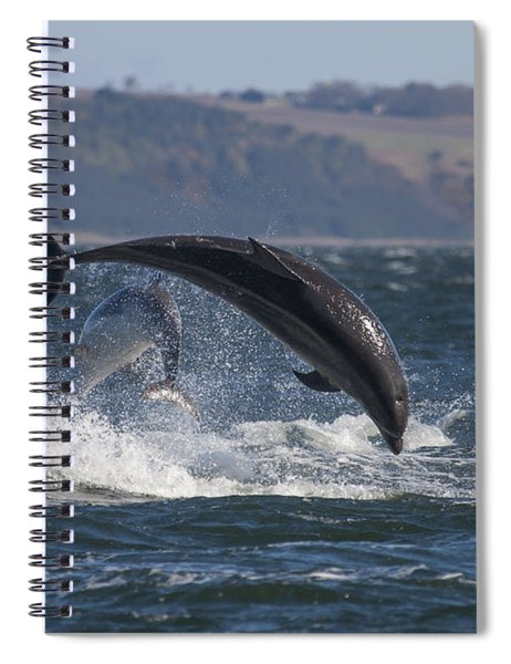 Bottlenose Dolphins - Scotland  #25 Spiral Notebook