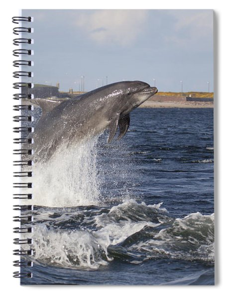 Bottlenose Dolphin - Scotland  #26 Spiral Notebook