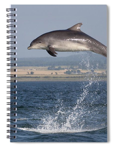 High Jump - Bottlenose Dolphin  - Scotland #42 Spiral Notebook