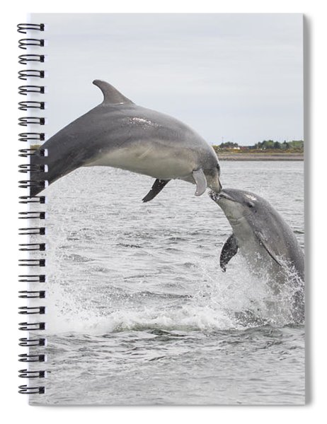 Bottlenose Dolphins - Scotland #1 Spiral Notebook