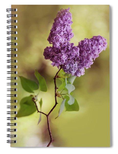 Branch Of Fresh Violet Lilac Spiral Notebook