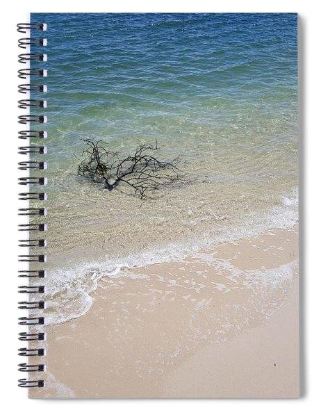Bribie Branches 2 Spiral Notebook