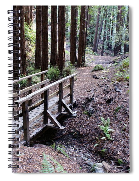 Bridge In The Redwoods Spiral Notebook