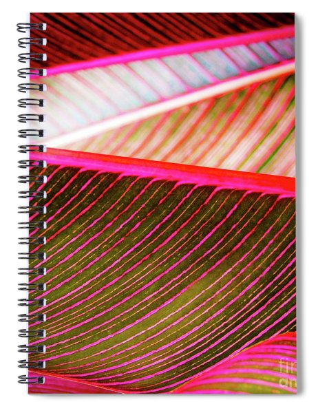 Bright Leaves 548 Spiral Notebook