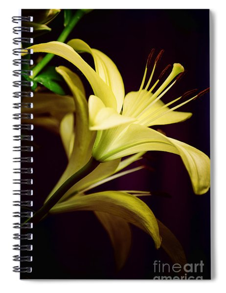 Brilliant Lily Spiral Notebook