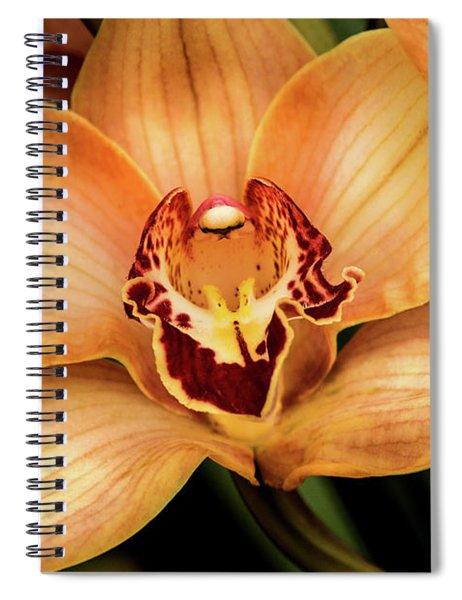 Brookside Orchid Spiral Notebook