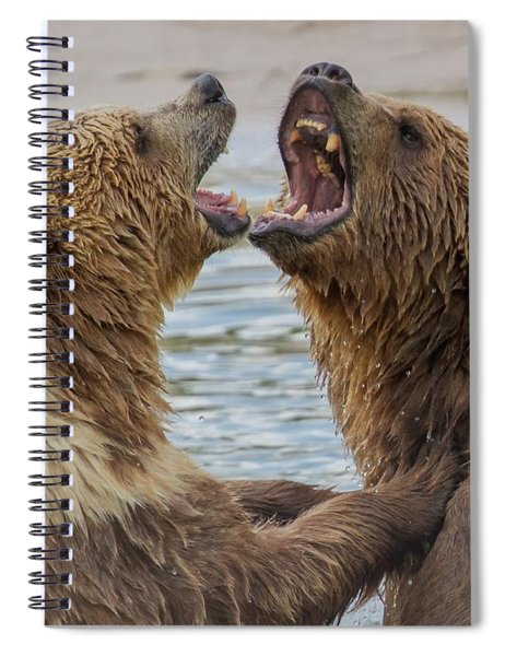 Brown Bears4 Spiral Notebook