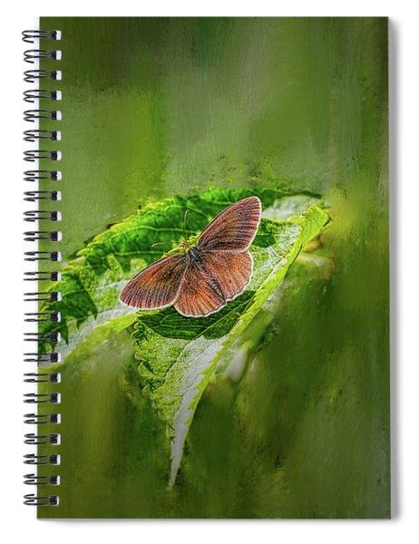 Brown Butterfly #h6 Spiral Notebook