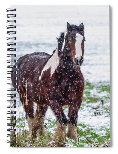 Spiral Notebook featuring the photograph Brown Horse Galloping Through The Snow by Scott Lyons