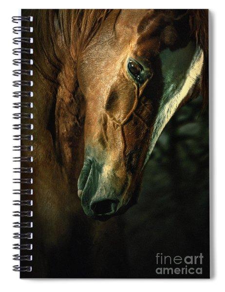 Brown Horse Portrait Spiral Notebook