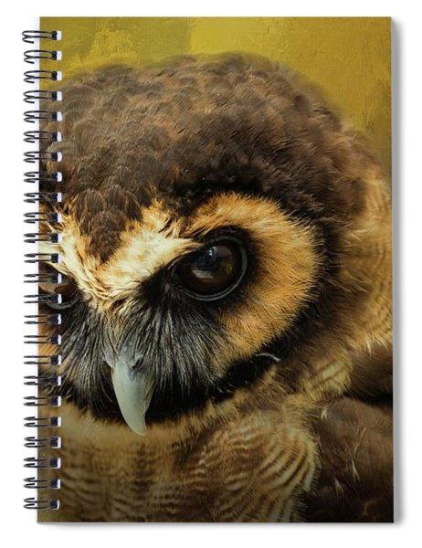 Brown Wood Owl Spiral Notebook