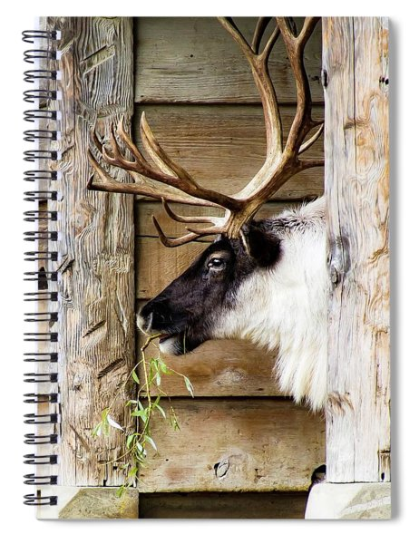 Brunch Spiral Notebook
