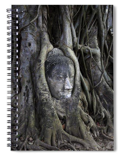 Buddha Head In Tree Spiral Notebook
