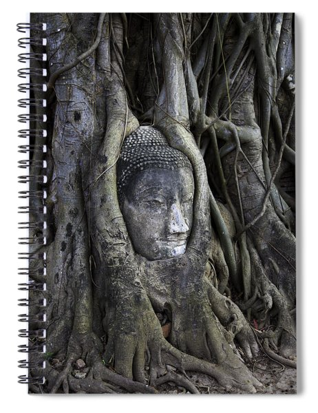 Buddha Head In Tree Spiral Notebook