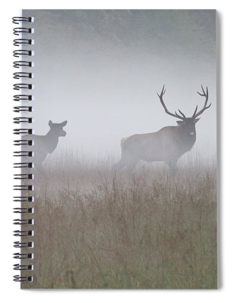 Bull And Cow Elk In Fog - September 30 2016 Spiral Notebook