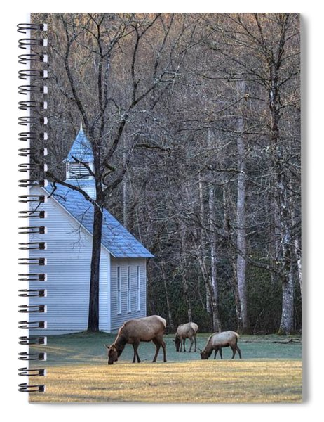 Bull Elk Attending Palmer Chapel  In The Great Smoky Mountains National Park Spiral Notebook