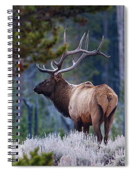 Bull Elk In Forest Spiral Notebook