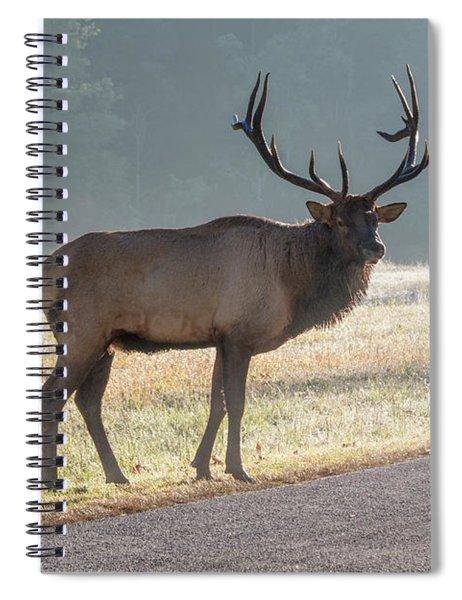 Bull Elk Watching Spiral Notebook