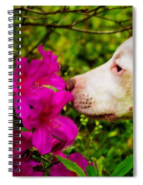 Bulldog Flowers Spiral Notebook