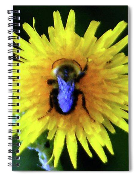 Bullseye Bumblebee Dandelion Spiral Notebook