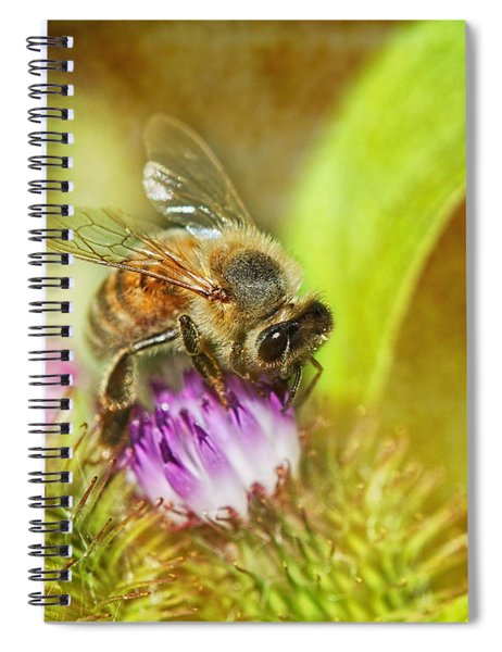 Bumbling Bee Spiral Notebook