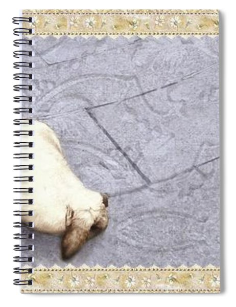 Baby Chases Bunny Spiral Notebook
